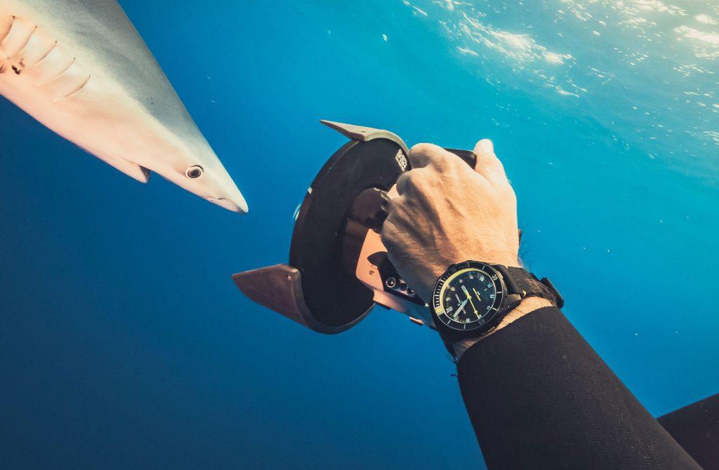 Ulysse Nardin Diver Lemon Shark con squalo